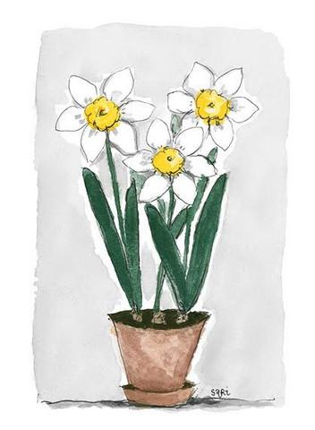KORTTI, Valkoiset kukat ruukussa, 2-osainen
