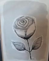 KIRJA, ruusu, musta/valk