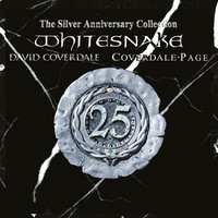 Whitesnake – The Silver Anniversary Collection (2CD, Used)
