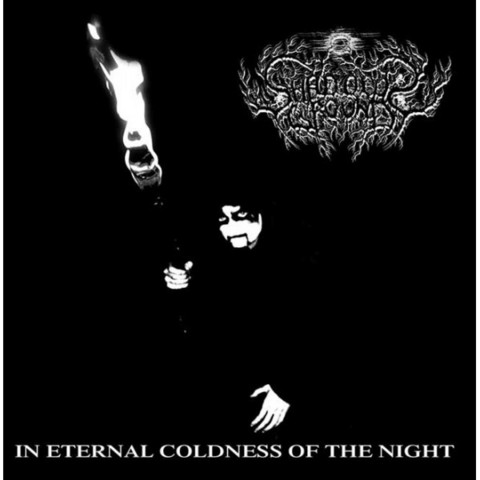 Shadows Ground - In Eternal Coldness of the Night (new)