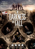 In Darkness We Fall (used)