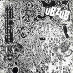 Ubzub ‎– Fluorescent Subcutaneous Alien Hut LP 7'' (used)