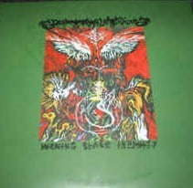 Dead Reptile Shrine - Burning Black Infinity (2 x LP, New)