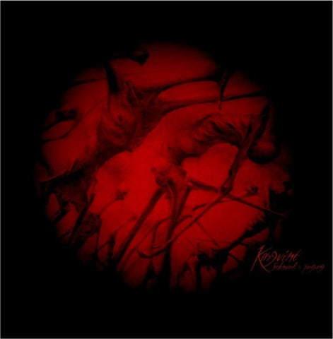 Kargvint - Seelenwerks Fortgang (LP, New)