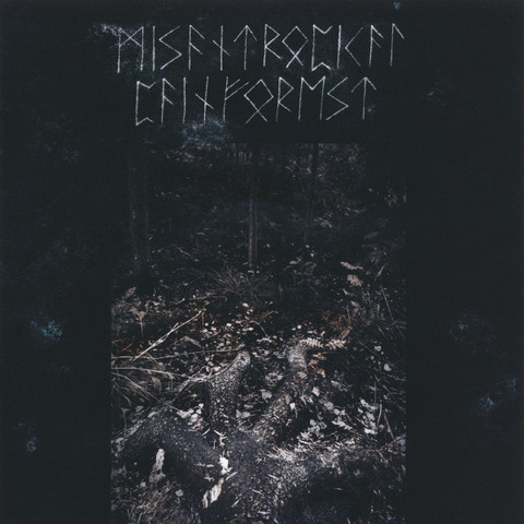 Misantropical Painforest - Firm Grip of the Roots (new)
