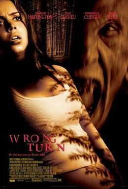 Wrong Turn (DVD, used)