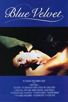 Blue Velvet (DVD, käytetty)
