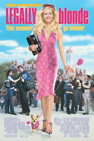 Blondin kosto ( DVD, used)