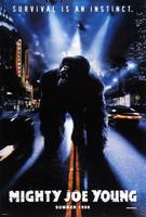 Terminator 3 - Koneiden kapina (DVD)