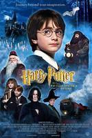 Harry Potter ja viisasten kivi (DVD)