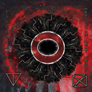 Psychonaut 75 / Aesthetic Meat Front – Demonium Of The Earth / Bird Of Oblivion, An Incantation Of Fire (CD, used)