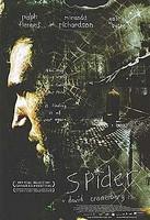 Spider (DVD, käytetty)
