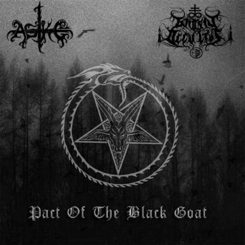 Aske / Gnosis Occultus - Pact Of The Black Goat (CD, Uusi)