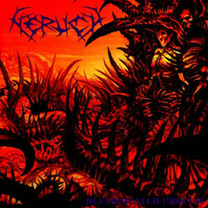 Nerlich – Defabricated Process CD (used)