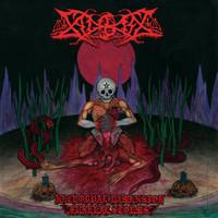 Sadokist – Necrodual Dimension Funeral Storms (LP, uusi)