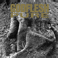 Godflesh – Pure (vinyl LP, käytetty)