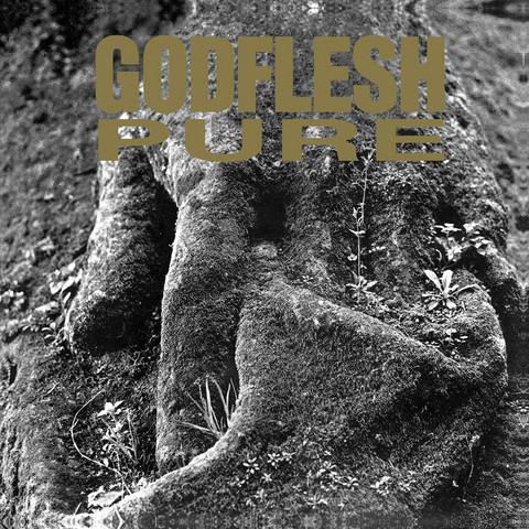 Godflesh – Pure (vinyl LP, used)