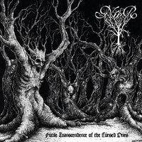 Nûr - Futile Transcendence of the Cursed Ones (New)