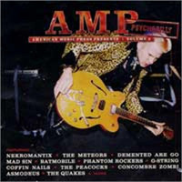 V/A - AMP Magazine Presents Vol. 5 (CD, New)