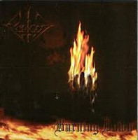 Forgot – Burning Down (CD, New)