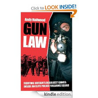 Gun Law (used)