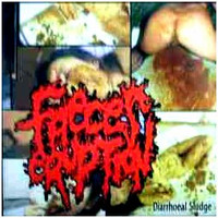 Faeces Eruption / Anal Penetration - Diarrhoeal Sludge (CD, Used)