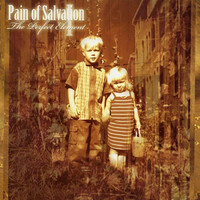 Pain Of Salvation - The Perfect Element (used)