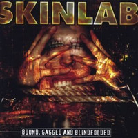 Skinlab - Bound Gagged And Blind Folded (käytetty)