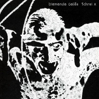 Diamanda Galás – Schrei x (CD, Used)