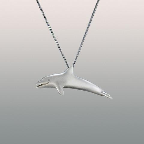 Delfiini-riipus