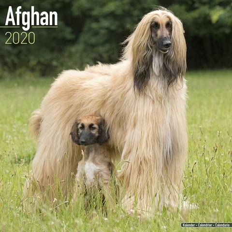 Afgan calendar
