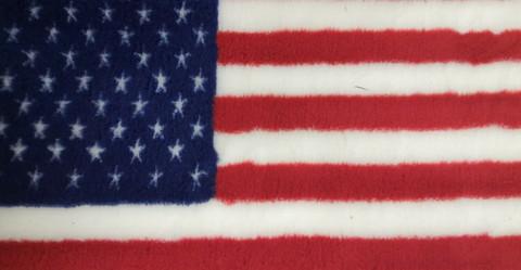 Vetbed Pinkki USA flag 100x80cm