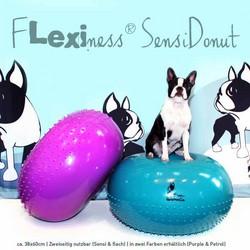 Flexiness SensiDonut - petrol