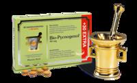 Bio-Pycnogenol 90+30tabl, Pharma Nord