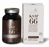 KSM66, Harmonia