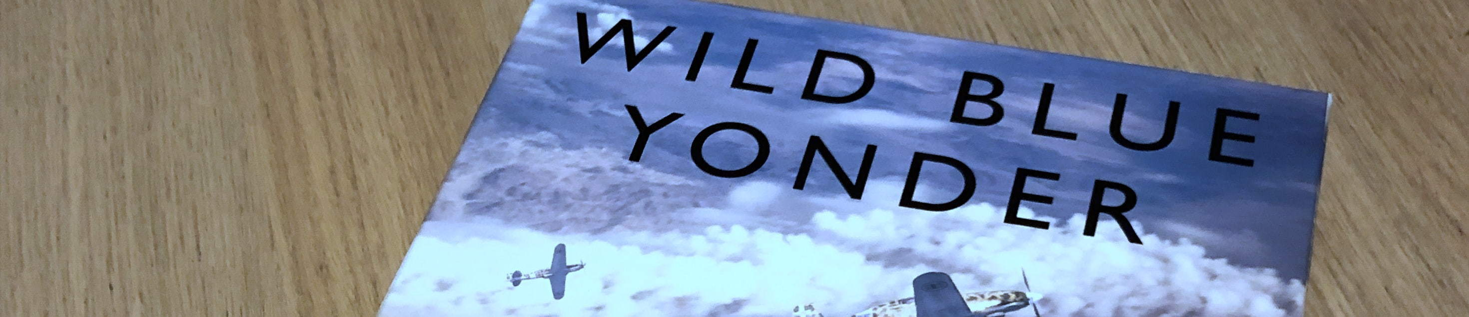 Wild Blue Yonder, a Down in Flames game