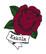 Kakolan ruusu-siirtotatuointi