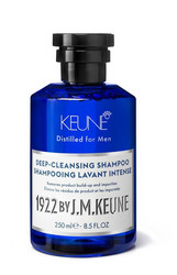 1922 DEEP-CLEANSING SHAMPOO 250 ML