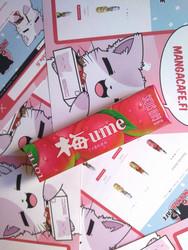 Lotte Ume-luumu purukumi