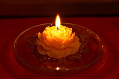Peony-kynttilä, Cosmetic