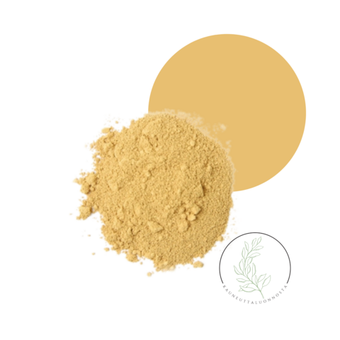 SATURNINA, Kuivan ja normaalin ihon mineraalimeikkipohja, 10g
