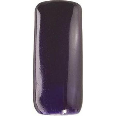 INTELLI GEL Color 5g - diamant prune
