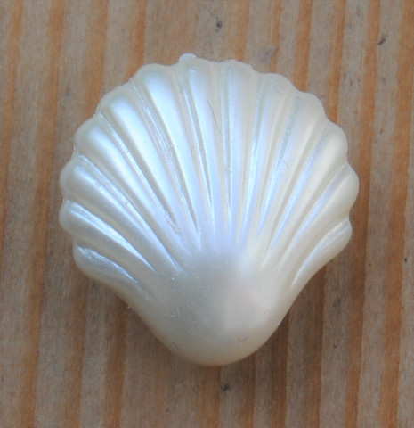 Valkoinen simpukkanappi, 15 mm