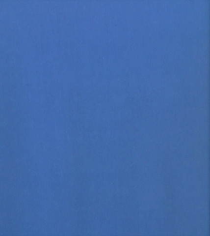 Sininen luomupuuvillatrikoo, interlock, 1 metri