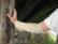KipuApusilkkivilla, luonnonvalkoinen, 3-säikeinen, 135g