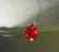 Swarovski kristalli sydänriipus punainen (vaalea Siam) 14 mm
