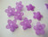 Lucitehelmi moniterälehtikukka lila 25 mm (5 kplpss)