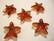 Swarovski kristalli Meritähti -riipus punainen Red Magma 20 mm