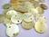 Simpukkahelmi/-linkki limen vihreä pyöreä litteä 15 mm, 2 reikäinen (10/pss)