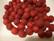 Polarishelmi rubiinin punainen matta 8 mm (4/pss)